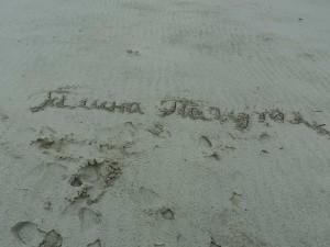 автограф у дюнах