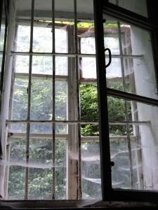 вікно в Добромильському-монастирі